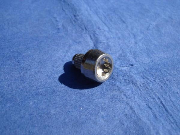 Zierstopfen D6x10 Titan Innenvielzahn